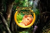 Secret-Forest_212x141